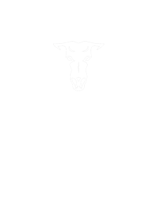 Epic Alaska Logo